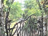 Rill Farm Gate Detail 1 by Spencer Field Larcombe, Metal, Hot Forged Mild Steel